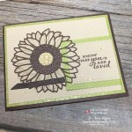 How to Make Cards with Dies from Stampin Up!