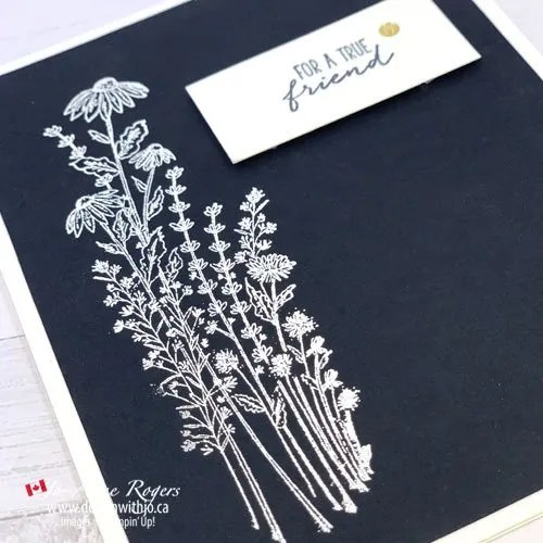 See 5 Minute Card Making with Dragonfly Garden tamps from Stampin' Up!