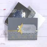 VIDEO Tips for How to Use the Elegant Tag Punch from Stampin