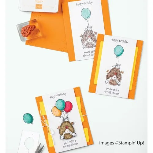 CASE the Cattie video for How to Colour with Stampin Blends