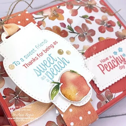 JO-Tips VIDEO for How to Make a Belly Band with You're a Peach DSP and Sweet as a Peach stamps from Stampin' Up!