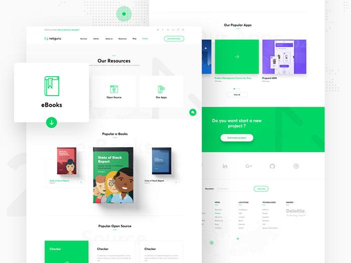 netguru_resources_mini Good Design Is Good Not Just For Aesthetic Reasons