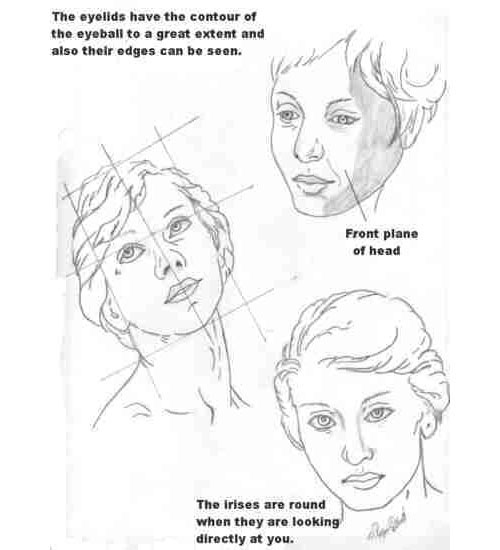 The Most Comprehensive Drawing Tutorials Collection
