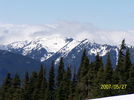 [ Hurricane Ridge, a view of the Olympic Mountains 3 ]