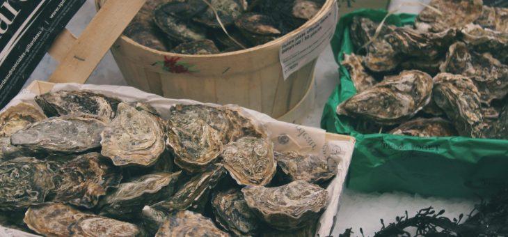 Dégustation d'huîtres et nouveautés