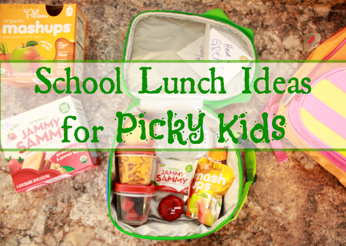 school lunch ideas for picky eaters scoutbox the funny mom blog