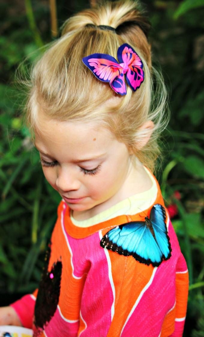 Butterflies-Land-On-Me