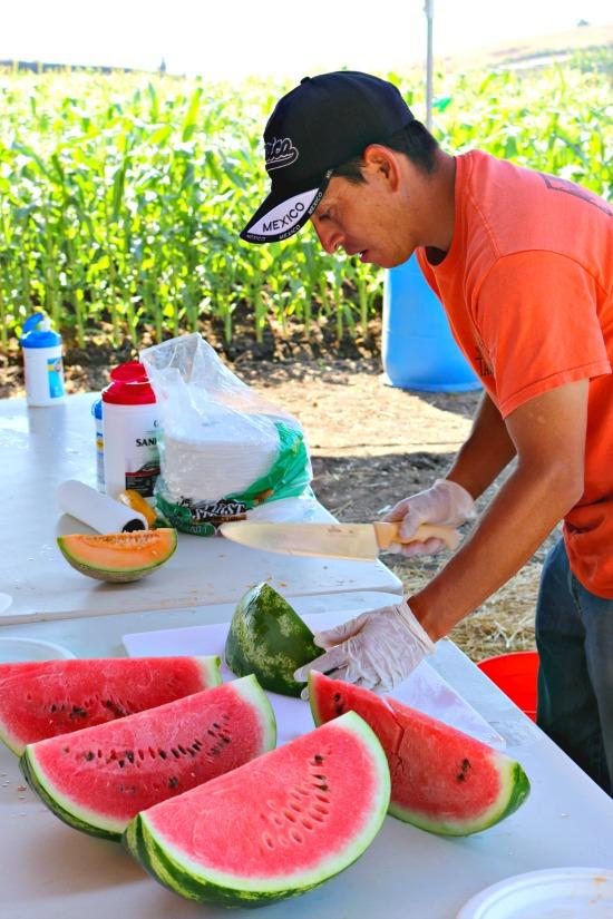 tanaka_farms_watermelon