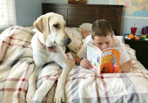 Help Crack the Case! Hilde Cracks the Case Hero Dog Giveaway #ScholasticBranches