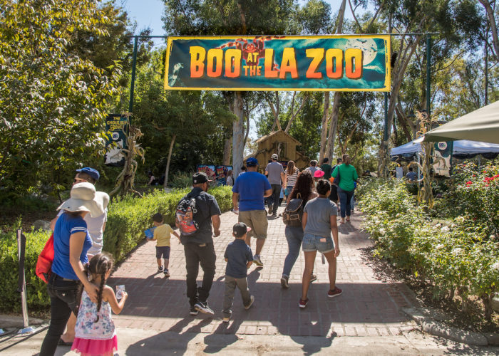 Win A Family 4 Pack Of Tickets To Boo At The La Zoo The Funny Mom
