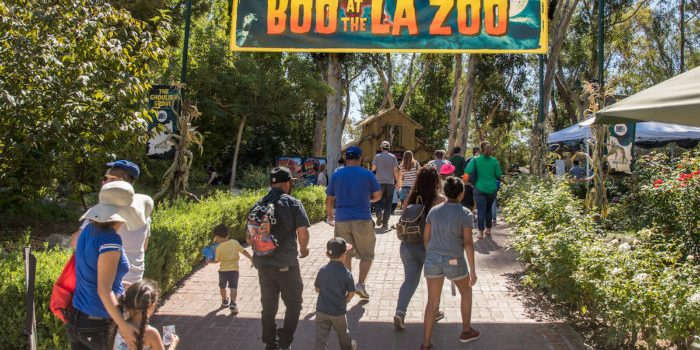 WIN A Family 4 Pack of Tickets to Boo at the LA Zoo!