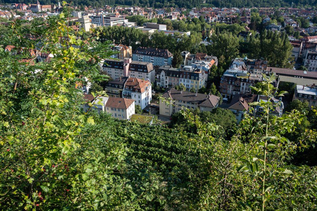 Freiburg im Breisgau , Tyskland Germany, Baden Württemberg, Kastaniegarten
