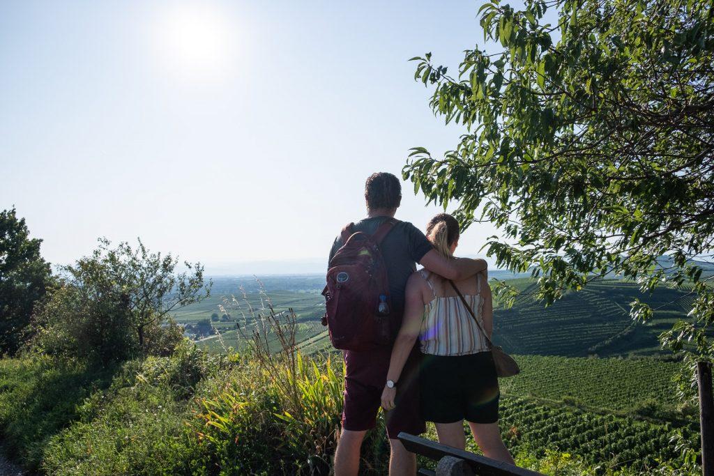 par, reise, Tyskland, Kaiserstuhl, vin, vingård, utsikt
