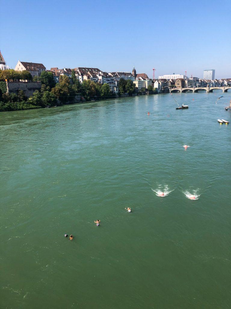 Rhine, Rhein, Rhinen, Switzerland, Sveits, Europe, Europa, flyting, svømming, floating, swimming