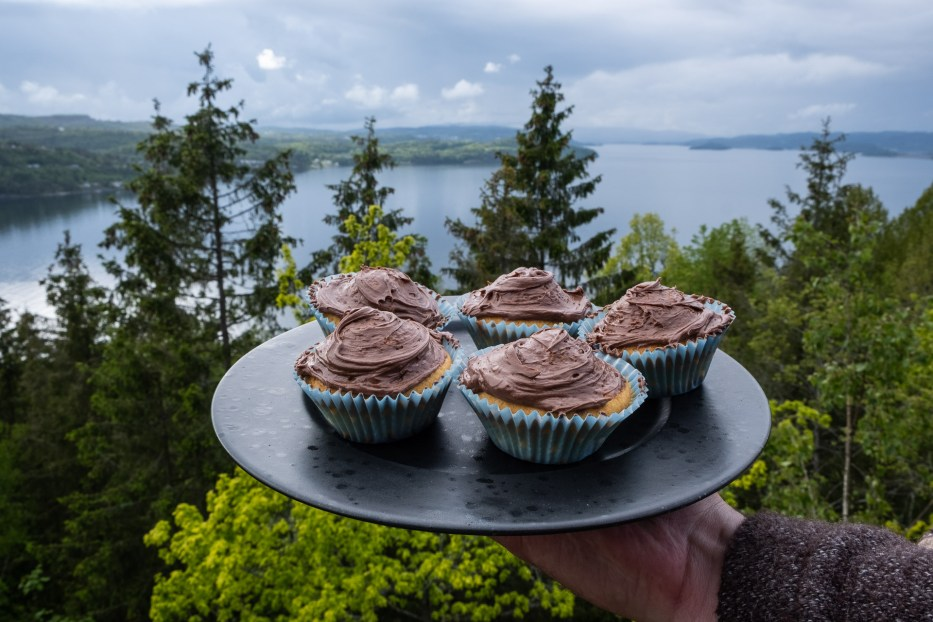 Tretopphytter Oslofjord, Norway, treetop cabin, nature, view, cupcakes