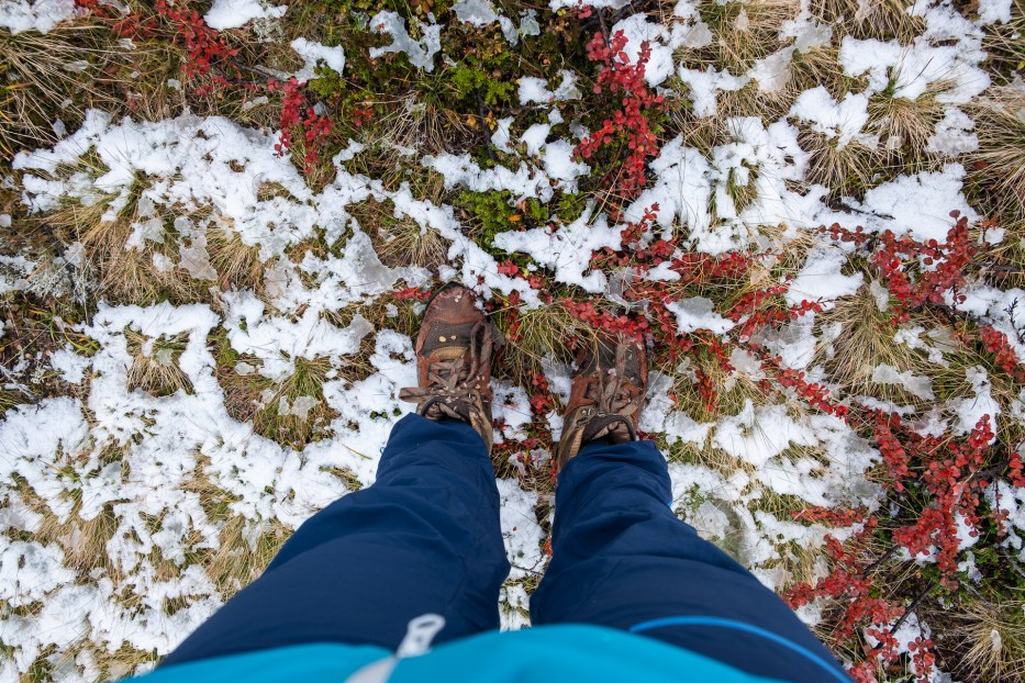 person standing on ground with autumn colors and specks of snow