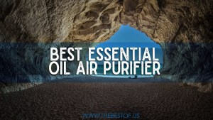 essential oils purification recipe, essential oils to freshen air, essential oils diffuser clean air, how do essential oils purify air, essential oils to clean lungs, air purifier essential oil diffuser, best essential oils for killing germs, essential oil blends to purify air, Best Essential Oil Air Purifier