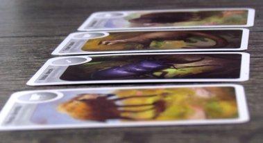Cardline: Svět zvířat - rozehraná hra
