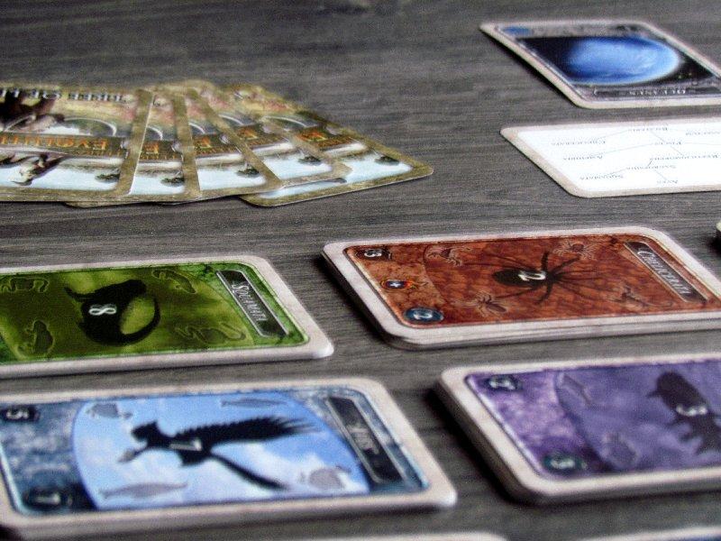 terra-evolution-06