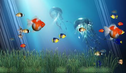 Coral Reef Aquarium Animated Wallpaper Preview