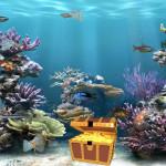 Clear Aquarium Animated Wallpaper