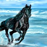 Running Horse Wallpapers Desktop Backgrounds Desktop Background