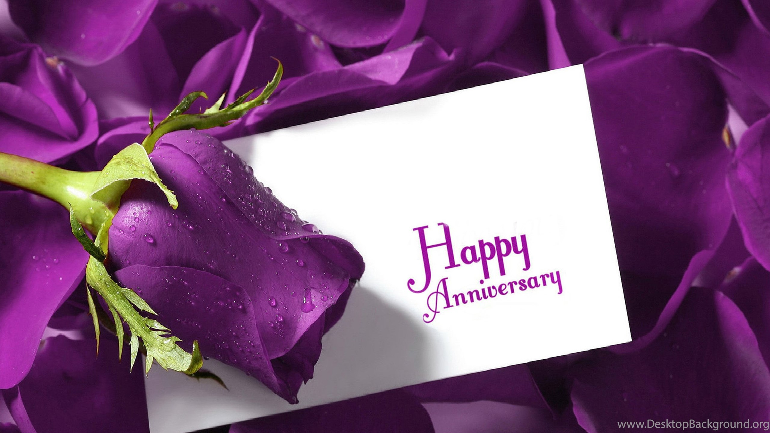 Happy Anniversary Wishes Hd Wallpapers Desktop Background