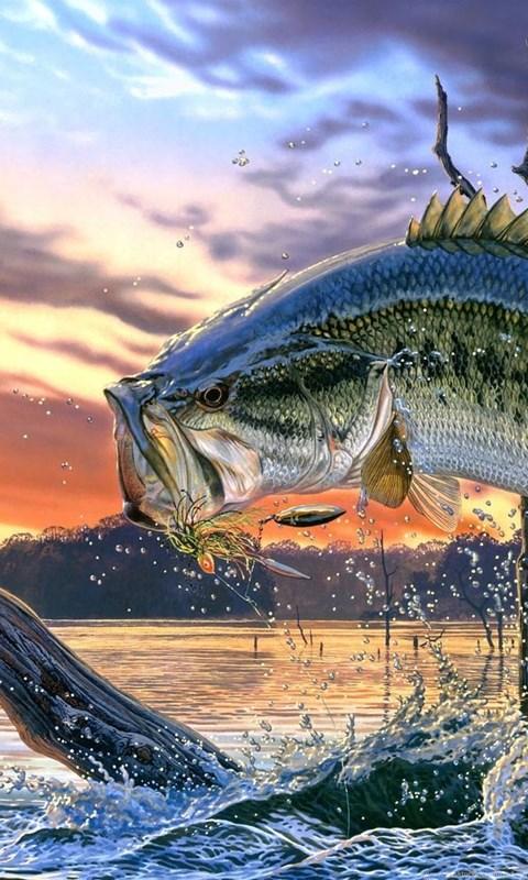 bass fishing live wallpaper