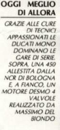 delbiondo5