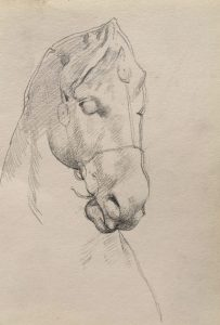 esmond Mac Mahon - Fine artist - London - Equestrian art - Horse sketch
