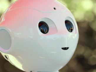 Proyecto de inteligencia artificial que utiliza un robot humanoide de la empresa francesa Aldebaran en la Universidad Palomar en San Marcos, California (EEUU)
