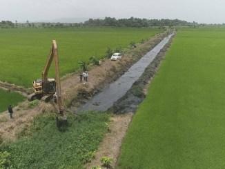 En las labores, el INDRHI tiene en la zona retroexcadoras estándar y de largo alcance y anfibios retirando malezas y sedimentos para acelerar la salida del agua que inunda las parcelas