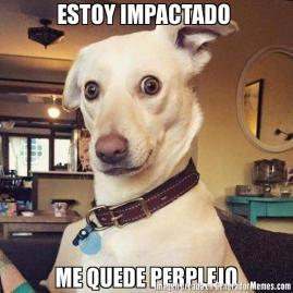 memes-whatsapp-de-animales-35