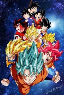 Dragon Ball fondos movil (75)