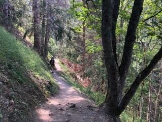 Aliénor dans les bois entre les Houches et les Contamines