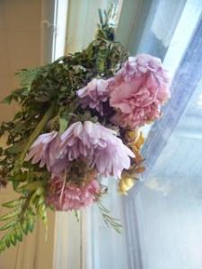 Preserving Flowers and Memories