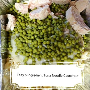 Super Easy 5 Ingredient Tuna Noodle Casserole