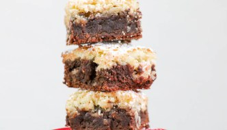 Chocolate Coconut Brownies combine two recipes into one fabulous dessert. Chocolatey goodness on the bottom and toasted coconut on top. Elevate your yum!