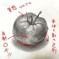 添削135:トマトのデッサン