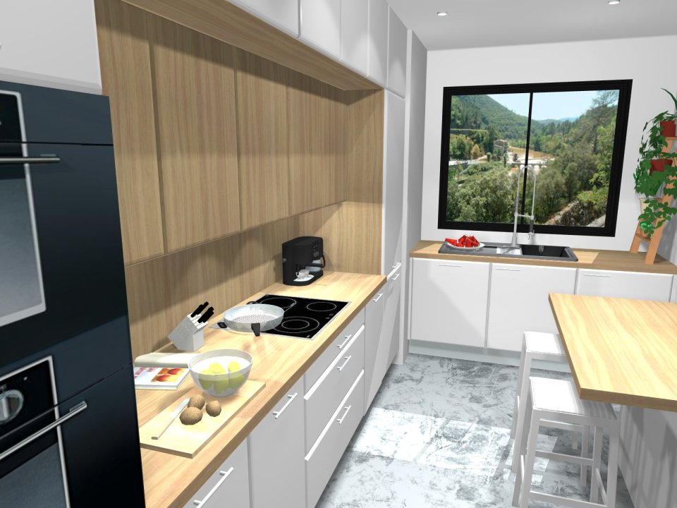 cuisine contemporaine projet 3d