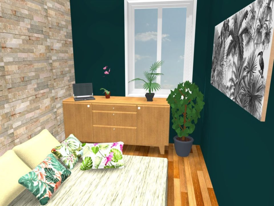 réaménagement d'un studio à la croix rousse projet 3d