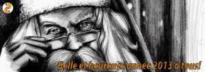 Belle & heureuse année 2013