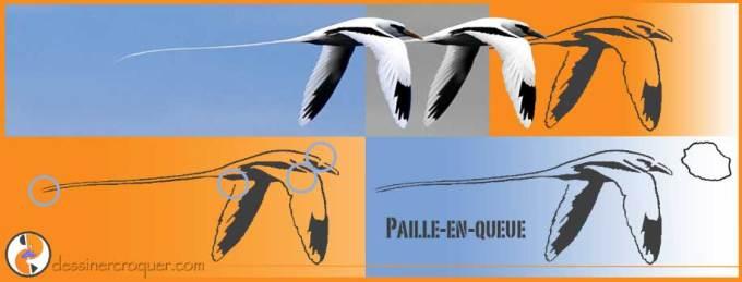 Pochoir-PailleEnQueue