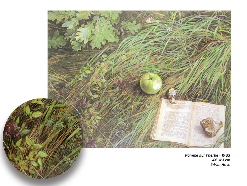 Peinture d'une pomme posée sur l'herbe