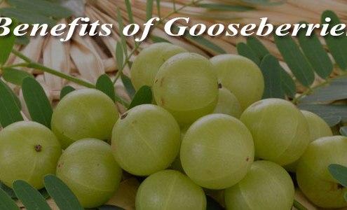Benefits-of-Gooseberries