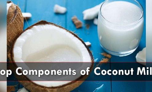 Top-Components-of-Coconut-Milk