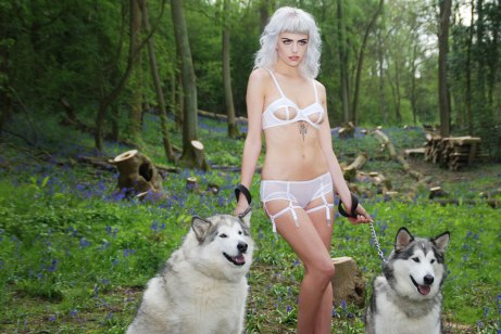 Reckles Wolf UK 2015 - 08