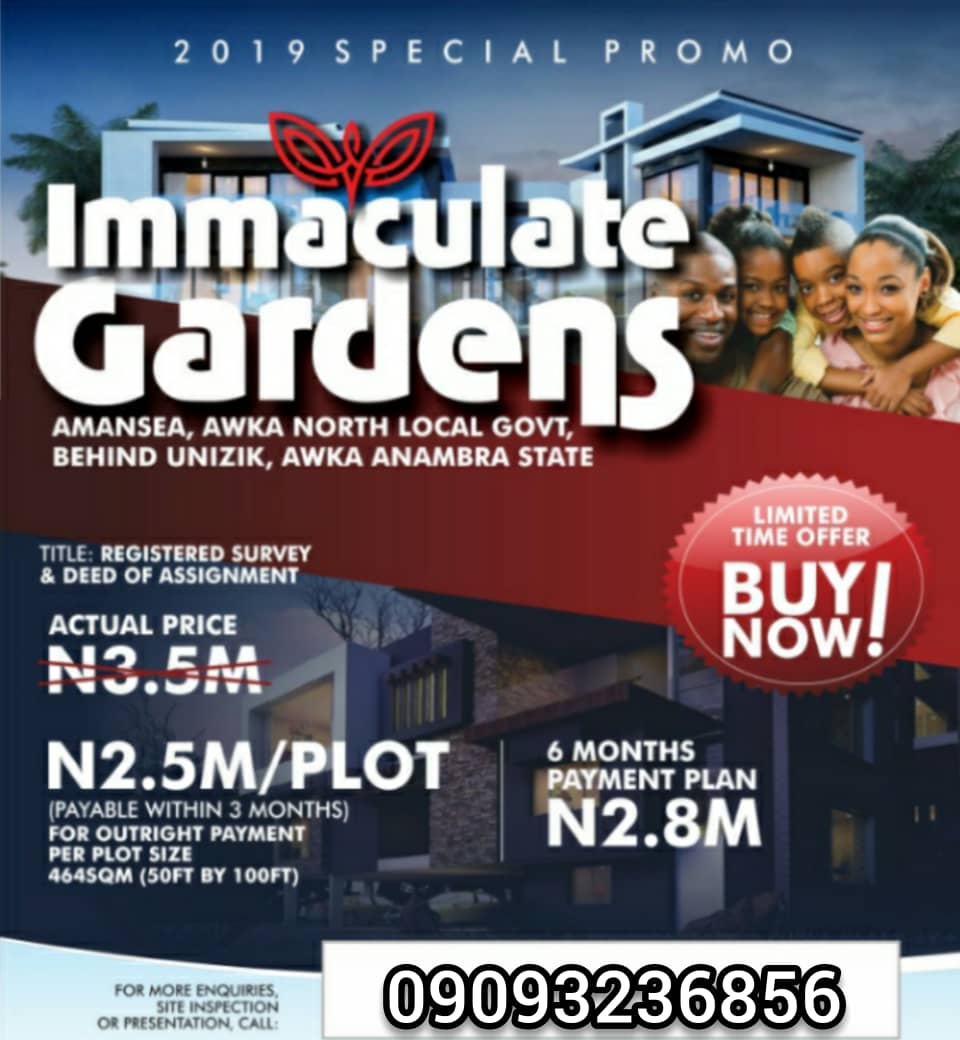 Affordable Land for Sale in Immaculate Gardens Estate, Awka