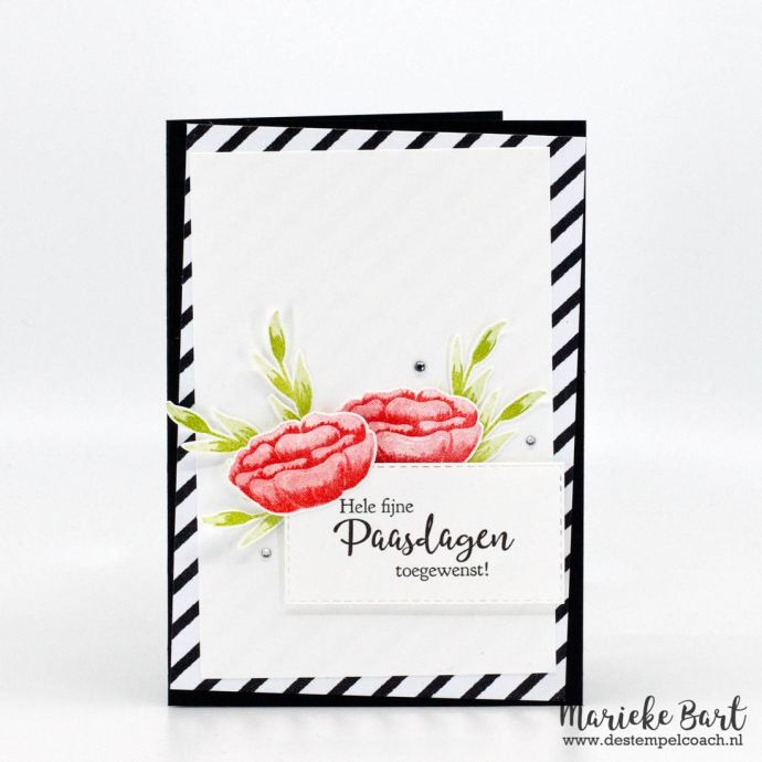 Incredible Like You Stamp Set by Stampin' Up!