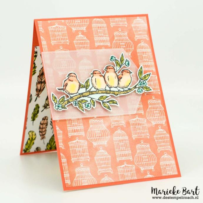Free as a Bird by Stampin' Up!